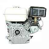 Jardiaffaires Motor Honda GX160 T1QX4 Seguridad de Aceite e Interruptor 19,05 x 61,5 mm