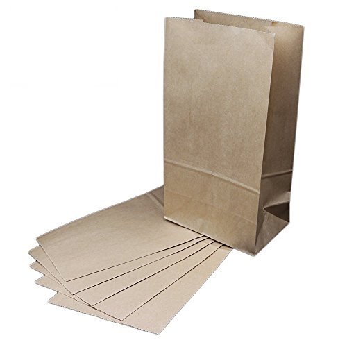 The Young® Bolsas de regalo de papel kraft de color marrón, marrón, Large 50