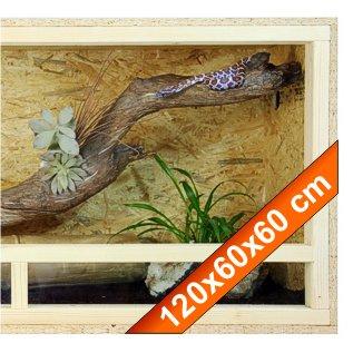 Terrarium: Holzterrarium für Reptilien, 120x60x60 cm, hochwertiges Terrarium aus OSB Holz, leichte Montage