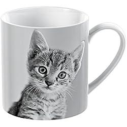 Creative Tops mascota esquina taza de porcelana, diseño de gato, color blanco
