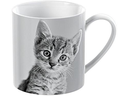 Creative Tops Tazza in porcellana, motivo: gattino, colore: bianco