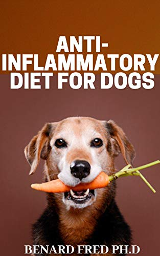 ANTI  INFLAMMATORY DIET ON  DOGS : thing  you need to know about anti inflammatory diet (English Edition)