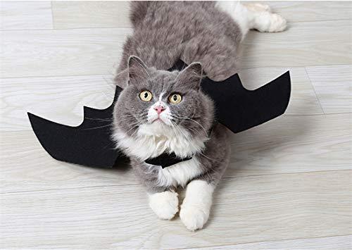 (Ungfu Mall Halloween-Kostüm, Fledermaus-Flügel, Katze, Hunde, Halloween, Katzen, Haustiere, Fledermaus-Kostüm, Zubehör)