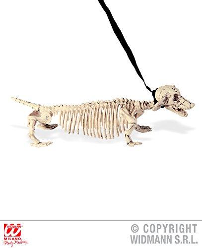Enter-Deal-Berlin Hunde - Skelett - 55 cm, mit Leine, Horror Figuren Tiere Dackel