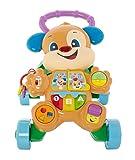 Fisher-Price FRC83 Lernspaß Hündchens Lauflernwagen Laufrad mit mitwachsenden Spielstufen Geräusche Liedern und Sätze, ab 6 Monaten deutschsprachig