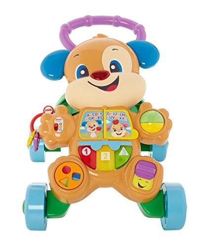 Fisher-Price FRC83 - Lernspaß Hündchens Lauflernwagen, Baby Lauflernhilfe mit mitwachsenden Spielstufen, Liedern und Sätze, Gehhilfe ab 6 Monaten, deutschsprachig