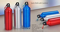 Blue Birds Water Bottle Aluminium Bottle 750ml Eco Friendly Premium Sports Bottle with Carabiner Multicolour
