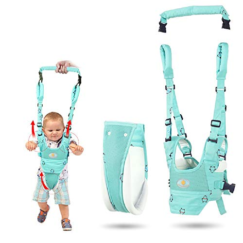 Handheld Baby Walker Toddler, Walking Assistant, Stand Up und Walking Learning Helper for Baby Safety Walking Harness Walker for Baby 7-24 Monate (Blue),Green