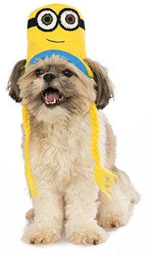 Minion Den Hunde Für Kostüm - Rubies Costume Company Minion Bob Knit Hund Genickstück