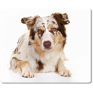 Mauspad / Mouse Pad aus Textil mit Rückseite aus Kautschuk rutschfest für alle Maustypen Motiv: Australian Shepherd mit auffälliger Fellfärbung Porträt - 12