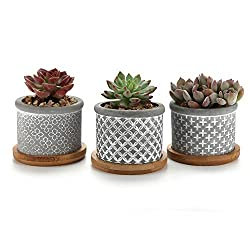 T4U 6CM Cement Succulent Planter Pot with Bamboo Tray Grey Set of 3, Small Concrete Cactus Plant Pot Indoor Herb Window Box Container for Home and office Decor Birthday Wedding