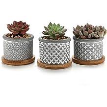 T4U 6CM Macetas para Cactus de Cemento con Plato de Bambú Paquete de 3, Mini