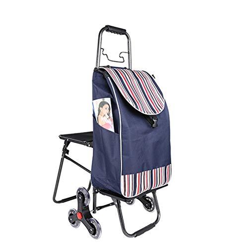 Tragbarer Trolley Mit Sitzhocker Einkaufswagen Alter Mann Kaufen Lebensmittel Einkaufswagen Kleiner Pull Cart Faltbarer Trolley Autositz Tragbarer Drag Life shopping Geeignet zum Angeln Skizzieren,G