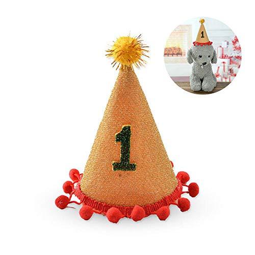 Sombrero de cumpleaños para Perro