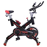 Best Bici Da Spinning - Ergonomic Pro Spinning Bike, sistema Silent MAX, disco Review
