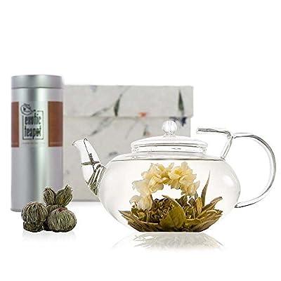 Grand Coffret découverte fleur de thé avec théière Lotus en verre soufflé