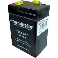 Terminator Rechargeable sealed lead acid batteries - TSLA 4-6V