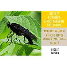 Insects & Arachnids: A Photographic Collection: Anahuac National Wildlife Refuge - Skillern Tract: Anahuac, Texas - Volume 1 (Arthropods of Anahuac: Skillern) (English Edition)