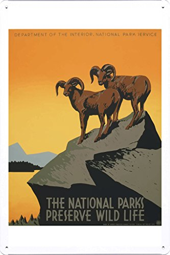 Tin Sign of Retro Vintage Travel Poster National Parks America USA (20x30cm) By Nature Scene Painting
