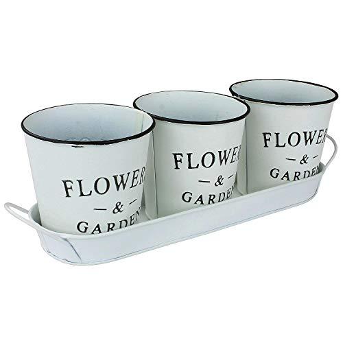 MACOSA NO55769 - Set di 4 vasi per Piante Vaso per Erbe aromatiche, in Zinco, Stile Vintage, Colore: Bianco