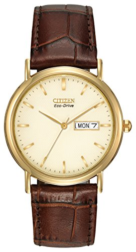citizen-eco-drive-gents-strap-watch