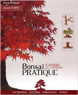 Bonsa pratique : Cahiers de l'apprenti de Joseph Somm ( 14 juillet 2008 )