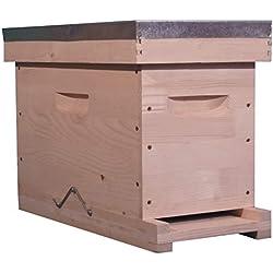 côté ruche Ruchette Dadant PRIBOIS