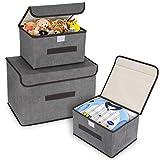 DIMJ 3 Stück Aufbewahrungsboxen mit Deckel und Griff, Faltbare Aufbewahrungskiste für Kleiderschrank, Kleidung, Bücher, Kosmetik, Spielzeug (Grau)