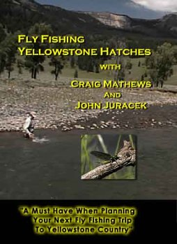 Fly Fishing Yellowstone Hatches -
