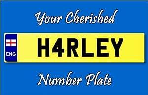 Personnalisée plaque d'immatriculation Porte-clé Harley Rond - 58 mm