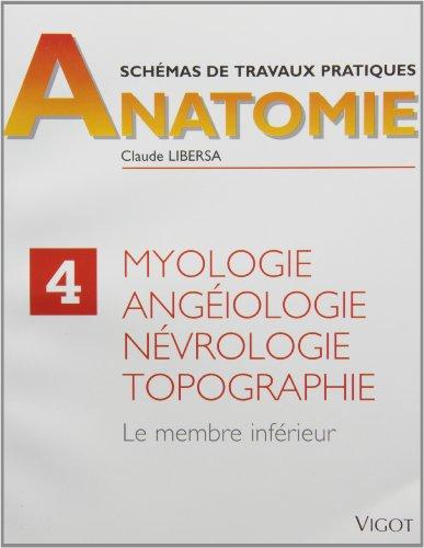 Myologie, angéiologie, névrologie, topographie. Membre inférieur