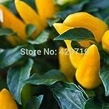 Pinkdose 200 Goldfinger Ornamental Pfeffer Gemüsesamen Gemüsesamen für Hausgarten im Freien Pflanze zu pflanzen