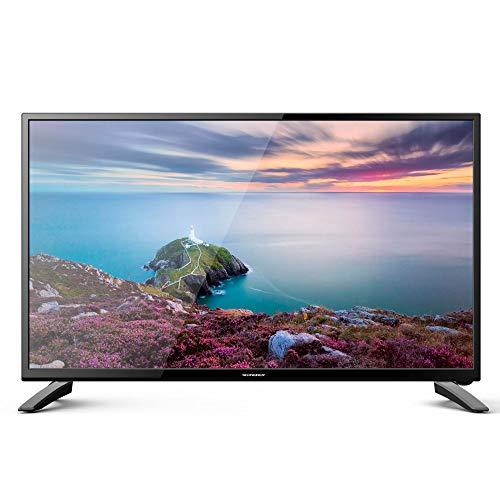 "Oferta de Schneider TV LED 24"" Full HD, SC-LED24SC510K, HDMI, USB 2.0, 1920x1080p, Sintonizador DVB-T/2/C, Negra"