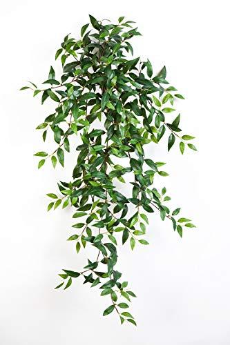 artplants Set 6 x Deko Tradescantia Fluminensis Aurelie, Steckstab, grün, 105 cm - 6 Stück Kunstpflanze hängend/Künstliche Ranke