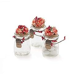 Idea Regalo - 20 Pezzi Barattolo Vetro Con Tappo In Sughero Porta confetti Bomboniera Incluso Decorazione Fatto A Mano Fiore pistilli Etichetta Tema Naturale (ROSSO)