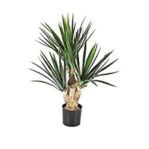 Pianta artificiale Yucca elephantipes, Yucca - altezza 68cm - 107 foglie
