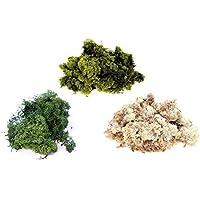 Inerra Finlandia Musgo - Multi Pack de 3 Colores - Reno Musgo Manualidades Plantas Ollas Flores Pantalla Modelado - verde oscuro, 3 x 50g Bags