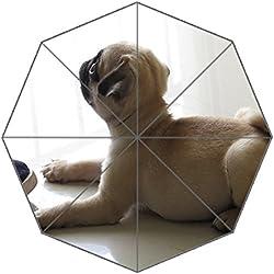 Dollay Me - Plegable Pug carlino Tamaño libre