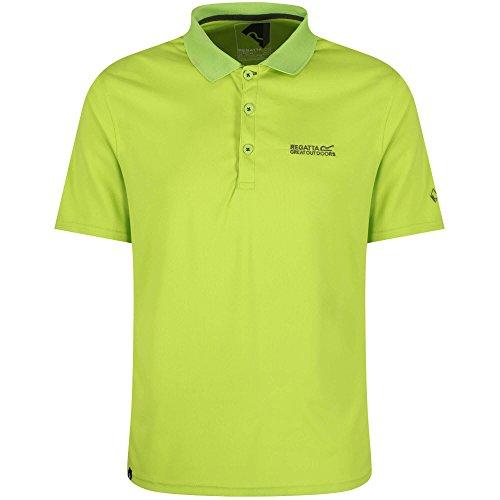 Regatta Maverick IV Poloshirt für Herren,Grün(lindGrün),XXL