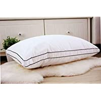 Slowly Rebounding Memory Hotel Pillow Pack of 2Pcs by HOURS, Size 50x70cm