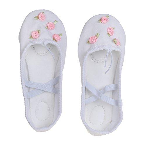 Chaussons de Danse Classique Toile Chaussures Demi-pointes Ballet Yoga Semelle Cuir pour Enfants Filles - Blanc, 29
