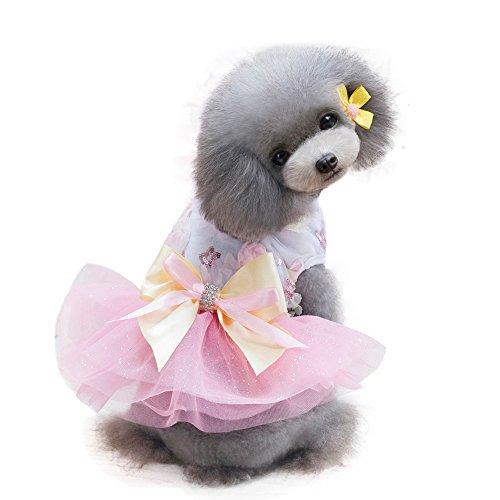 Hawkimin Haustier Kleid, Blume Strass Bogenknoten Süssigkeiten Farben Chiffon Rock Prinzessinenkleid Bekleidung Hundekleid für Kleine Mittelgroße Haustiere
