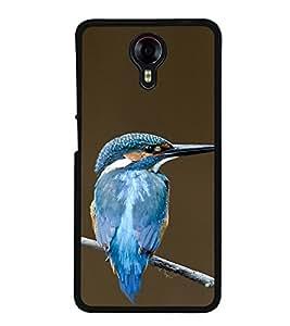PrintVisa Beautiful Bird High Gloss Designer Back Case Cover for Micromax Canvas Xpress 2 E313