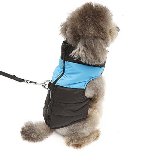 Hubulk Small Medium impermeabile cucciolo Pet inverno maglione caldo trapuntato imbottito soffiatore Puffa Vest Abbigliamento Coat cablaggio giacca D-ring (Blu)