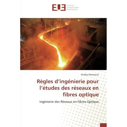 Regles d'ingenierie pour l'etudes des reseaux en fibres optique: Ingenierie des Reseaux en Fibres Optique
