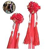 Hanfu seta fascia del fiore Fiamme Hairpin nappa Hairwears
