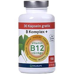 Vitamin B-Komplex: Alle acht B1-B12 Vitamine hochdosiert I 5- Monatsvorrat I Zusatzkraft durch Ginkgo Biloba I Ideal bei Stress und Ermüdung I Ohne Zusatzstoffe