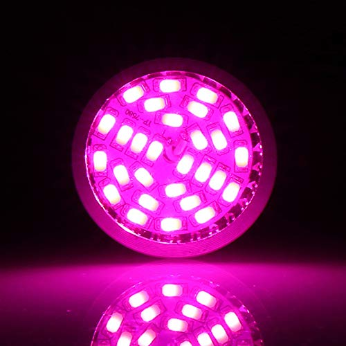 Viktion E27/E14/GU10 6W 28 LEDs Pflanzenlampe Vollspektrum Pflanzenlicht Wachstumslampe (GU10)