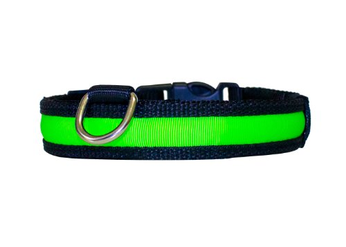 """Hunde Leuchthalsband LED Halsband Hundehalsband Hunde-Halsband """"Zandoo"""" Leuchthalsband für Hunde inkl. Batterie in der Farbe grün Haustiere Katzen Größe M (ca. 40-50 cm) NEU von der Marke PRECORN"""