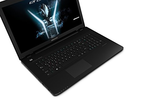 Medion Erazer P7643 MD 60404 439 cm 173 Zoll mattes extensive HD indicate Gaming Notebook Intel central i7 6500U 16GB RAM 15TB HDD 256GB SSD Nvidia GeForce GTX 950M 4GB DDR3 DVD RW Win 10 household schwarz Notebooks
